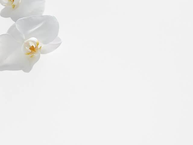 Đá Trắng Sứ Nhân Tạo (Diamond White)